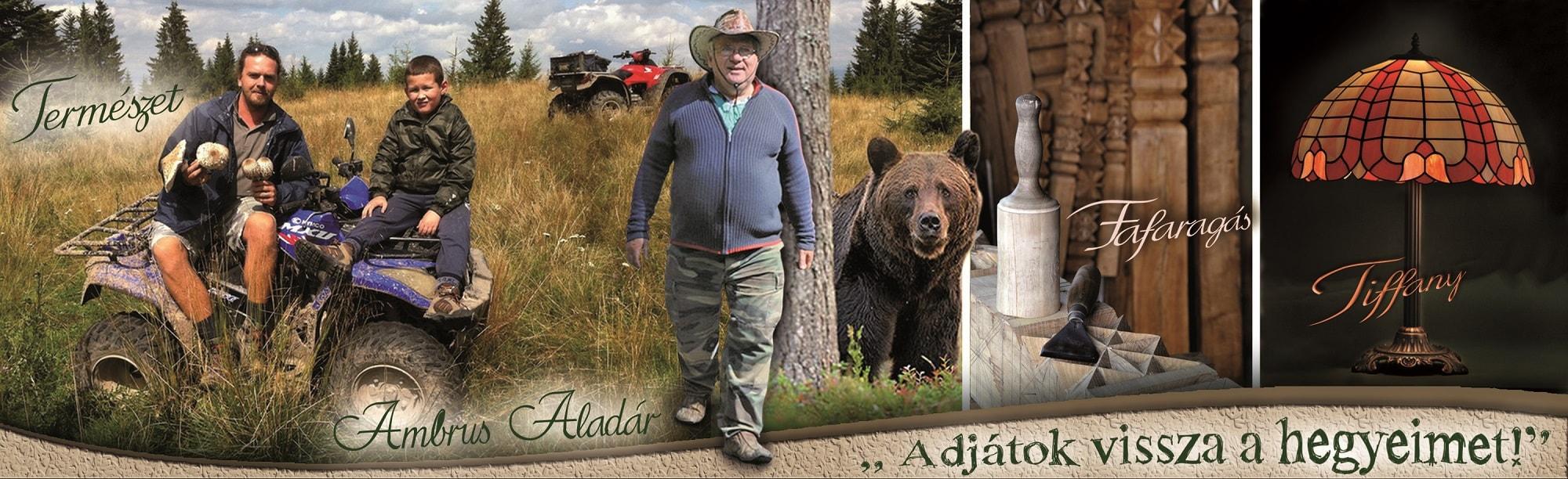 Ambrus Aladár blog